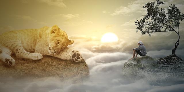 Lev a člověk