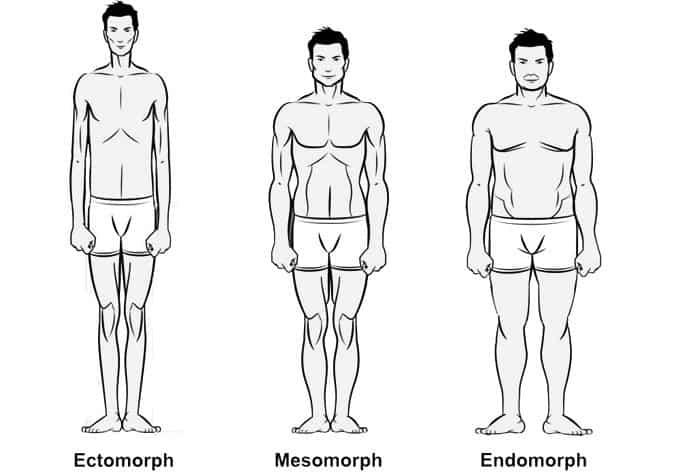 Tělesné typy